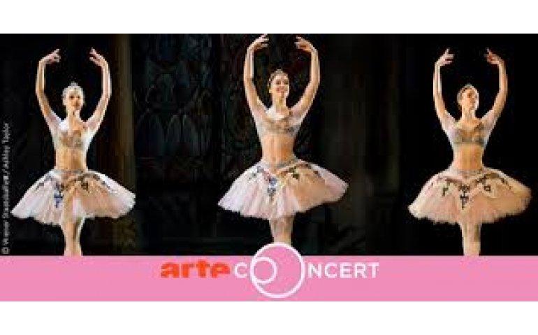 Cultuurzender ARTE brengt opera's exclusief in 4K via satelliet