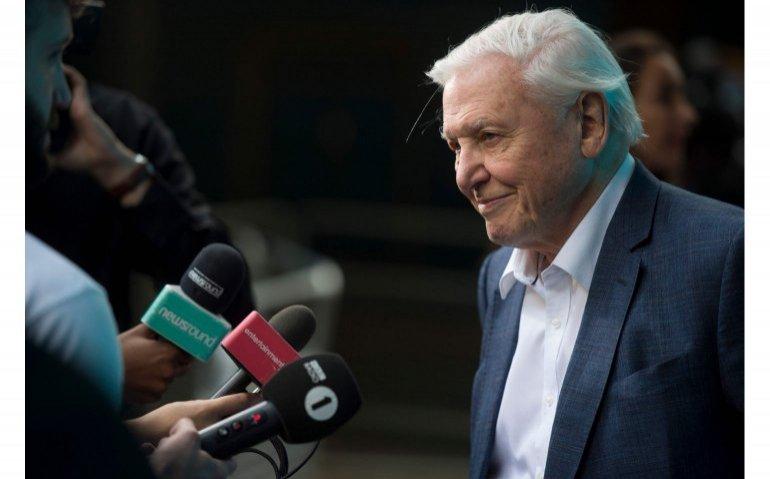 Verontwaardiging over schrappen stem David Attenborough bij Blue Planet door EO