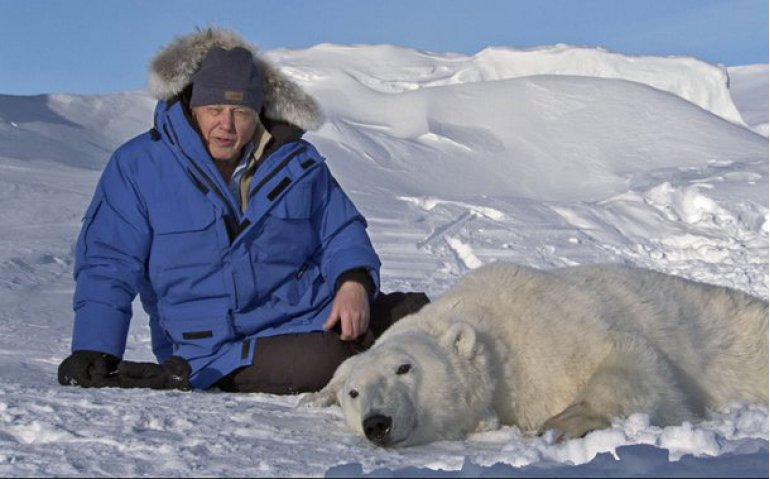 Natuurseries BBC en Europese dramaseries komende jaren bij NPO