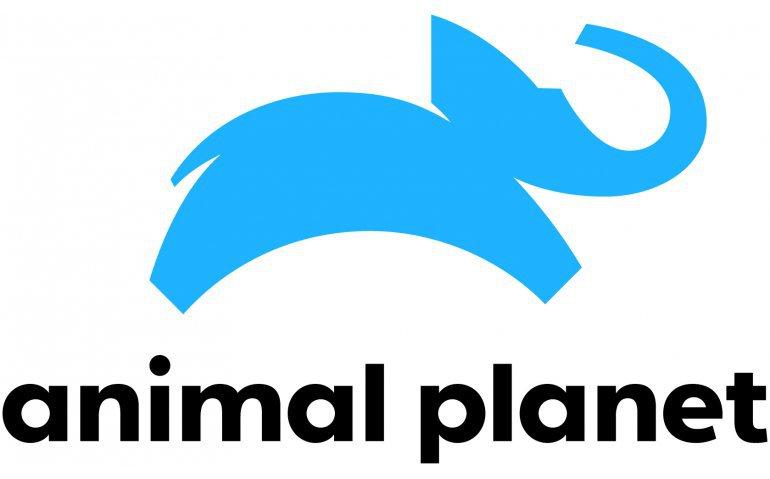 Wijzigingen bij Animal Planet
