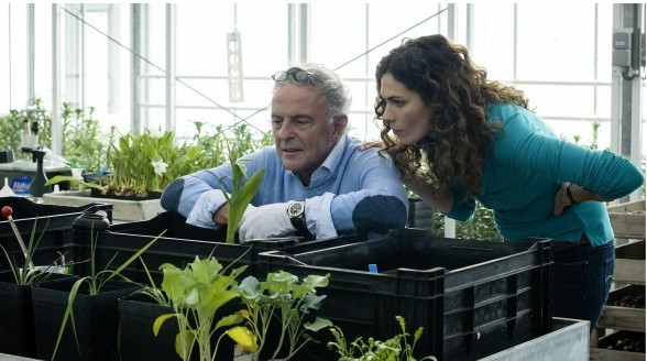 RTL onderhandelt over tweede seizoen Zwarte tulp