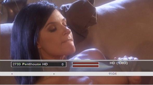 Uitbreiding Penthouse HD bij CanalDigitaal en Online.nl